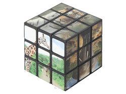 Magic Cube Wilde Tiere