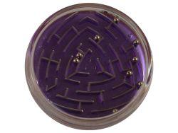 Puzzle Variante Flipside Kugellabyrinth 01